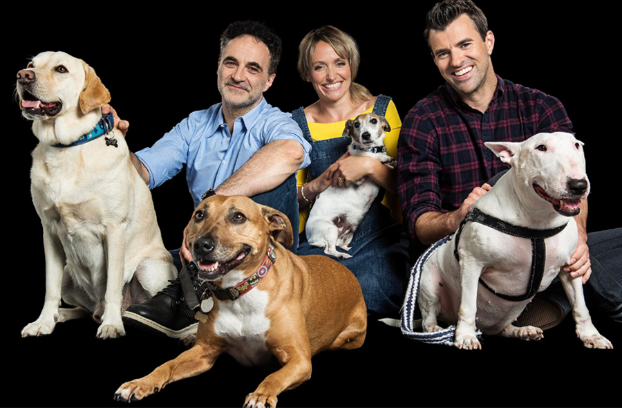 Channel 4 Animal Rescue Live